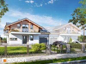 projekt Dom w budlejach (B)
