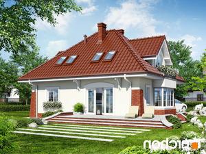 projekt Dom w koniczynce lustrzane odbicie 2