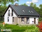 projekt Dom w borówkach 2 dodatkowa wizualizacja