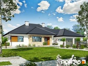 projekt Dom w akebiach 2 lustrzane odbicie 1