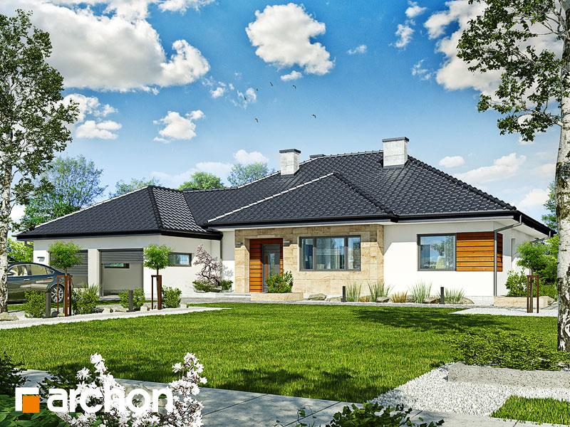 Projekt: Dom w akebiach 2 ver.2 Wizualizacja widok 1