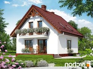 projekt Dom w rododendronach 11 lustrzane odbicie 2