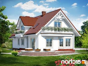 projekt Dom w lobeliach lustrzane odbicie 2