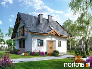 projekt Dom w poziomkach 3 lustrzane odbicie 1