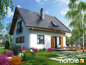 projekt Dom w poziomkach 3 lustrzane odbicie 2