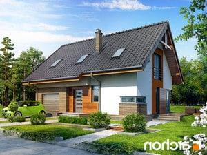 Projekt dom pod liczi ver 2  260lo