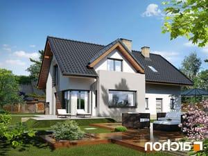 projekt Dom pod liczi (G2) lustrzane odbicie 1