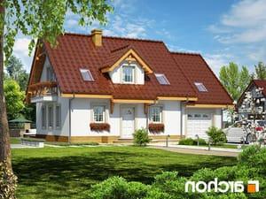 projekt Dom w poziomkach 4 lustrzane odbicie 1