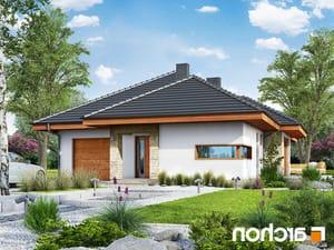 projekt Dom w cyprysikach lustrzane odbicie 1