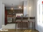 projekt Dom w kardamonie Aranżacja kuchni 1 widok 3
