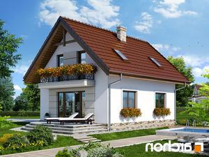 projekt Dom w lukrecji 4 lustrzane odbicie 2