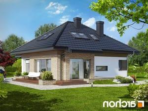 projekt Dom w lilakach (GPD) lustrzane odbicie 1