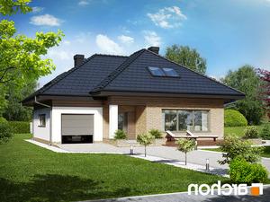 projekt Dom w lilakach (GPD) lustrzane odbicie 2