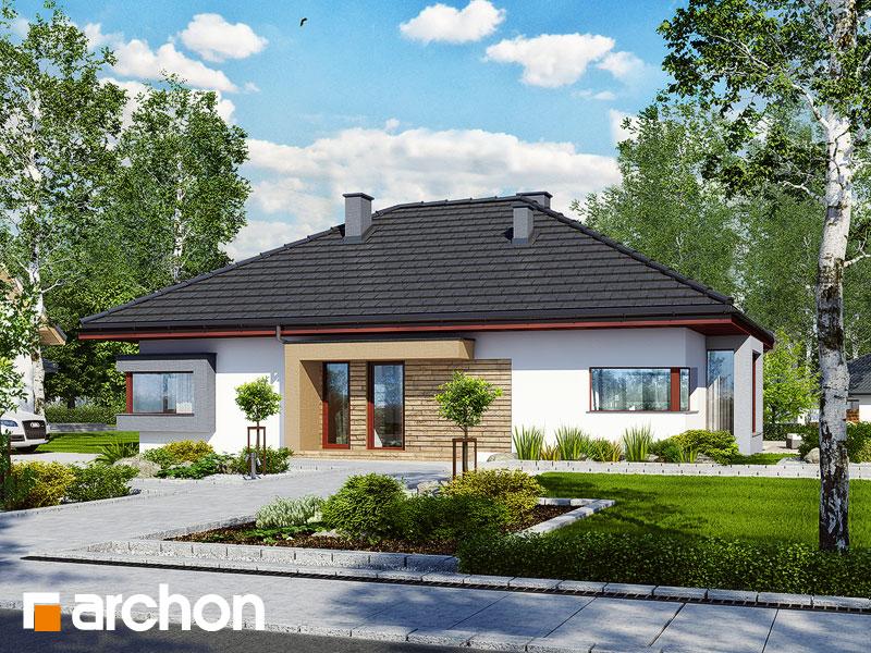 Projekt: Dom pod jarząbem (N) ver.2 Wizualizacja widok 1