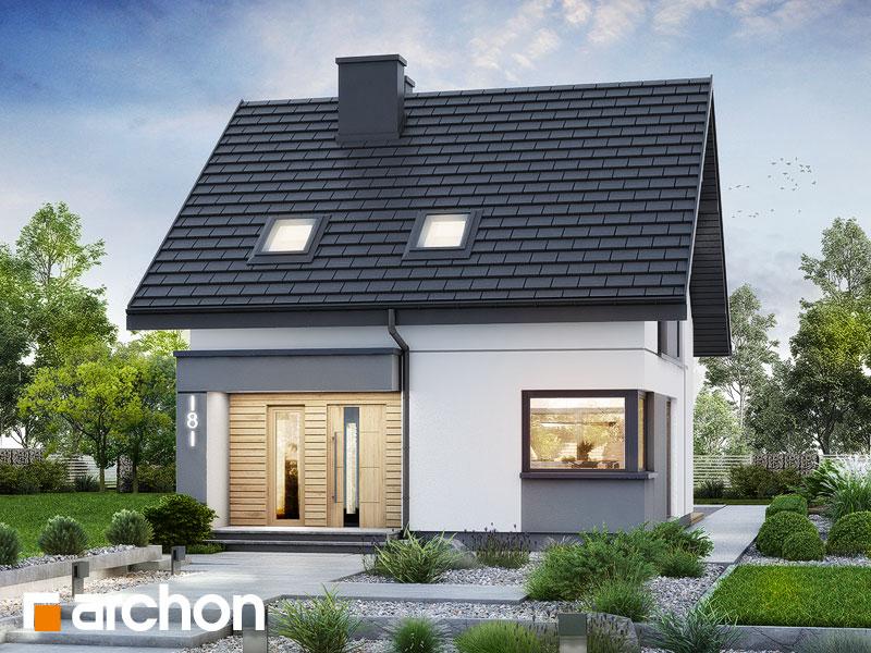 gotowy projekt Dom w borówkach 6 widok 1