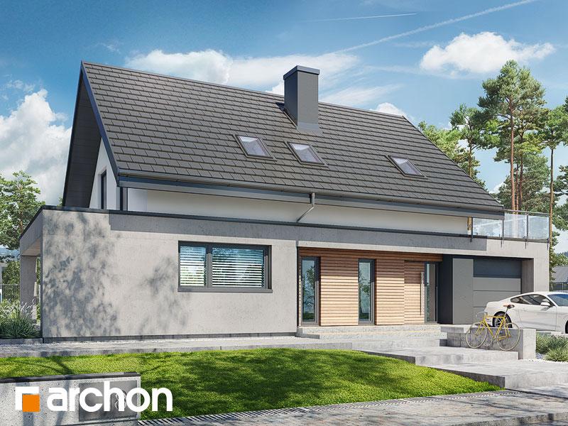 gotowy projekt Dom w dipladeniach 2 widok 1