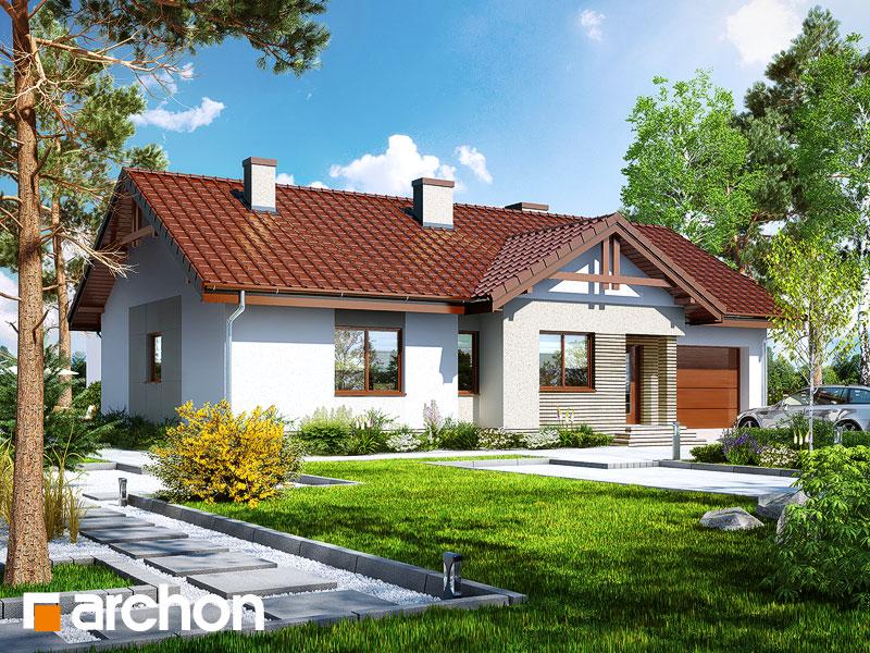 gotowy projekt Dom w nerinach 3 widok 1