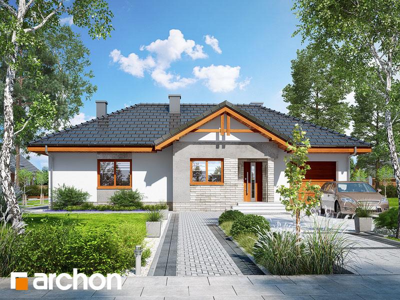 gotowy projekt Dom w nerinach 5 widok 1