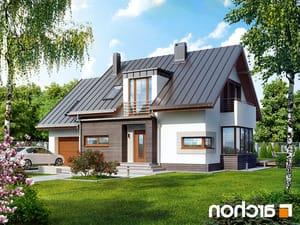 projekt Dom w kardamonie 2 lustrzane odbicie 1