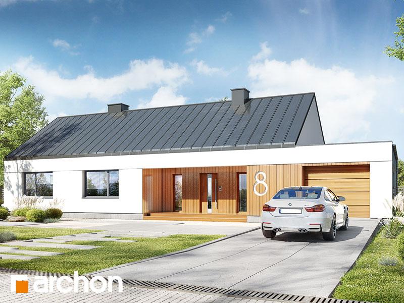 gotowy projekt Dom w pióropusznikach widok 1