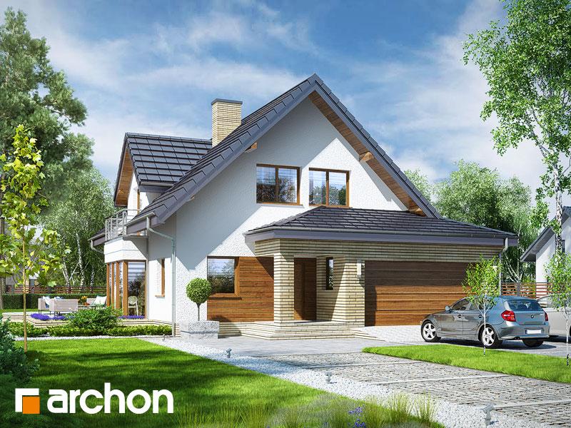 gotowy projekt Dom w świetliku (G2N) widok 1