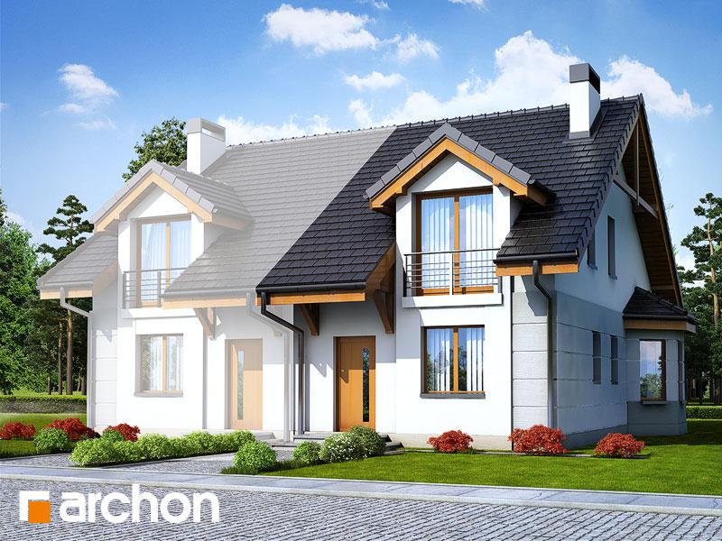 gotowy projekt Dom pod miłorzębem 2 widok 1