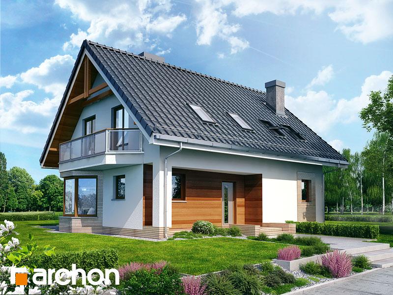 gotowy projekt Dom w dziewannie widok 1