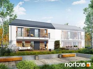 projekt Dom w halezjach (R2B) lustrzane odbicie 1