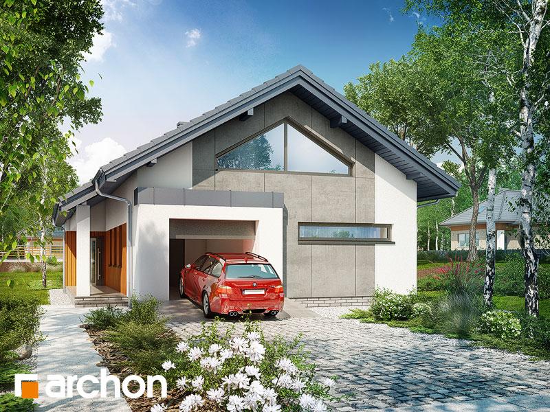 gotowy projekt Dom w araliach widok 1