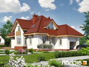 projekt Dom w fuksjach 4 lustrzane odbicie 1