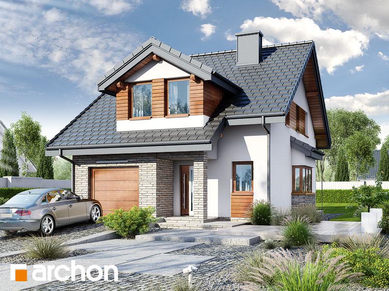 projekt Dom w dmuchawcach (N) widok 1