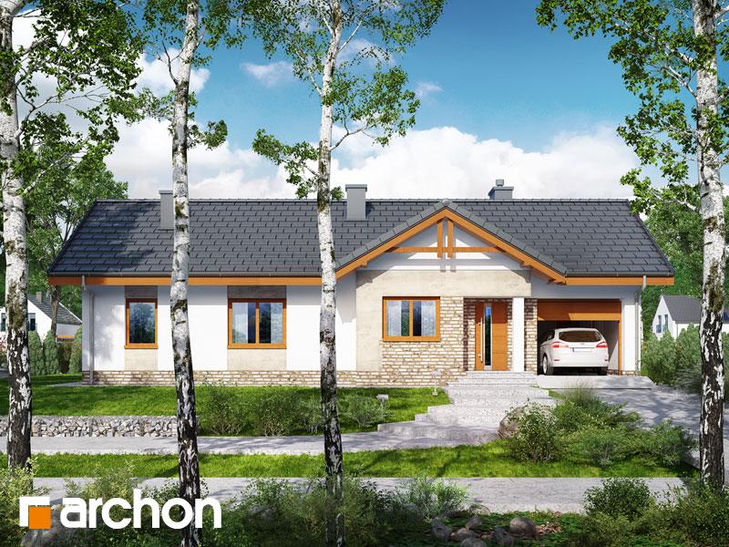 gotowy projekt Dom w nerinach 4 widok 1