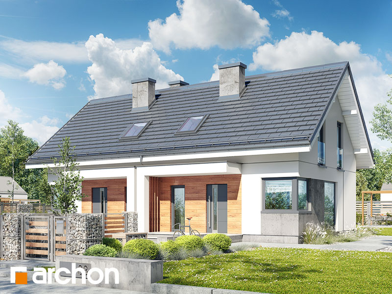gotowy projekt Dom w borówkach (R2N) widok 1
