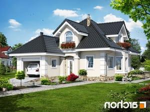 projekt Dom w rukoli (P) lustrzane odbicie 1