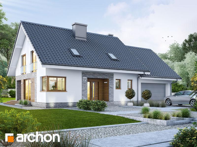 gotowy projekt Dom w srebrzykach (G2) widok 1