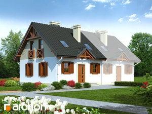 projekt Dom w borówkach (B)