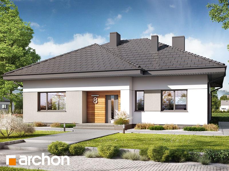 gotowy projekt Dom w modrzykach 4 widok 1