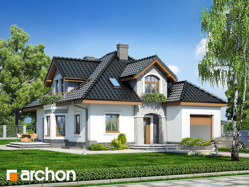 gotowy projekt Dom w firletkach (P) widok 1