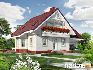 projekt Dom w perłówce 2 lustrzane odbicie 1