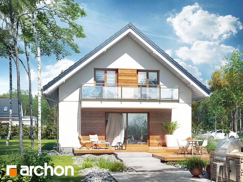 gotowy projekt Dom w śnieguliczkach widok 1