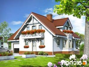 projekt Dom w rododendronach 5 lustrzane odbicie 1