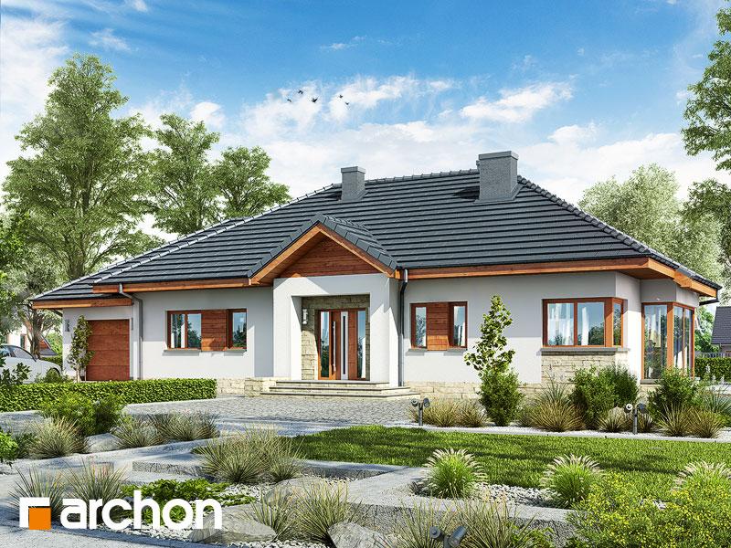 gotowy projekt Dom w gaurach 4 (N) widok 1