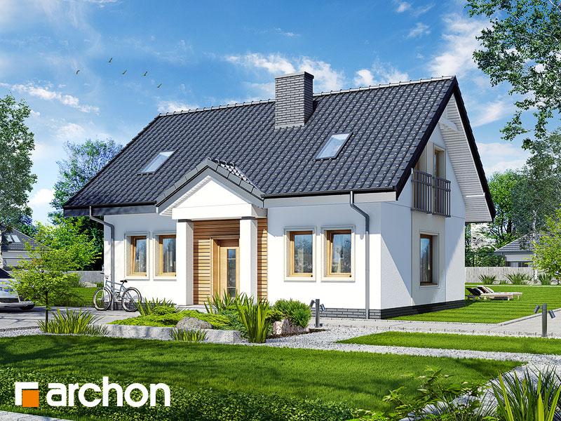 gotowy projekt Dom pod wierzbą (T) widok 1