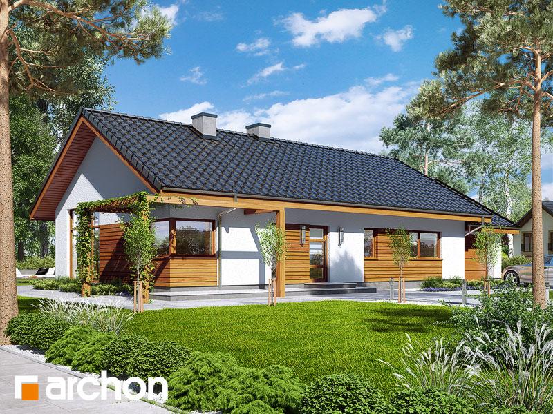 gotowy projekt Dom w mekintoszach 4 (M) widok 1
