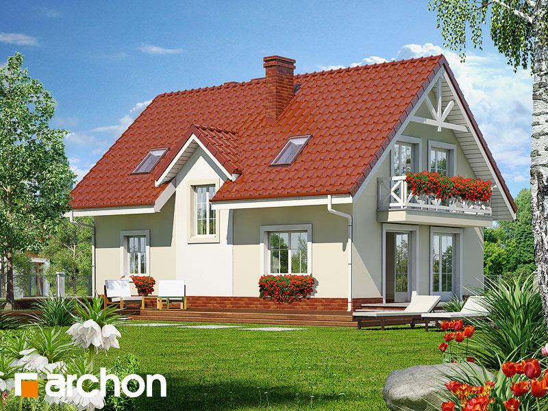 gotowy projekt Dom w groszku widok 1