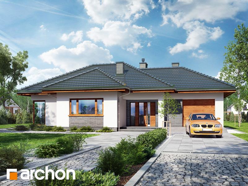 gotowy projekt Dom w rawanach widok 1
