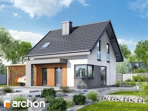 projekt Dom w borówkach (N)