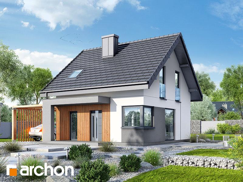 gotowy projekt Dom w borówkach (N) widok 1