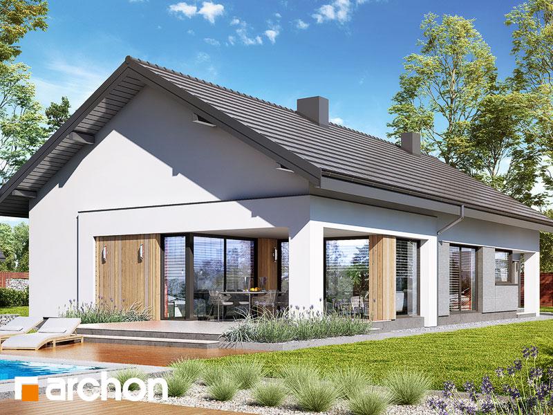 gotowy projekt Dom w modrzewnicy 5 (G) widok 1