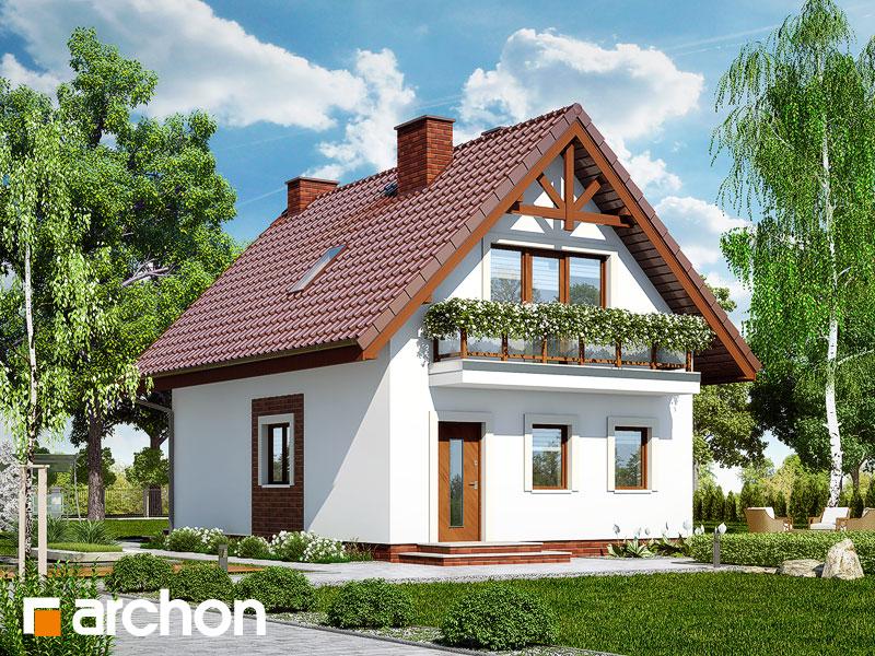 gotowy projekt Dom w sasankach widok 1